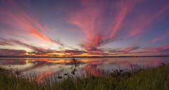 Dreams Do Come True. (williams.darrell53) Tags: sunset lake color colour reflection tree water canon landscape williams dam australia darrell samyang