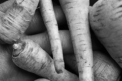 Camouflage (seegarysphotos) Tags: blackandwhite strange vegetables fun weird hands different fingers odd camouflage veg daft parsnip garylewis seegarysphotos