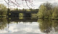A Tranquil A74 (Mac ind g) Tags: bridge reflection river walking scotland riverclyde clyde spring glasgow glasgowgreen