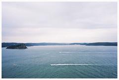 West Head Lookout (Anita Waters) Tags: 35mm fuji superia olympus 400 analogue centralcoast pittwater xtra filmphotography lionisland om2n kuringgaichasenationalpark brokenbay westheadlookout