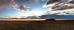 Leaden Hall Hill, New Forest (Stephen Munn) Tags: sunset sky pine clouds sunrise dawn nationalpark dusk pines tress newforest heathland