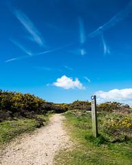 Th Coastal Path - DSCF8338 (s0ulsurfing) Tags: nature fuji natural path april fujifilm isle wight 2016 s0ulsurfing xt1