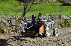 guas Frias (Chaves) - ... estrumando os terrenos ... (Mrio Silva) Tags: primavera portugal maio trator chaves aldeia trsosmontes agricultura 2016 lavoura illustrarportugal guasfrias mriosilva adubobiolgico lumbudus estrumar