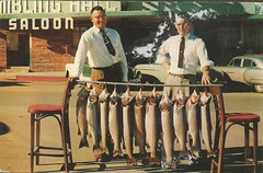 Trout display at the Saloon (912greens) Tags: fish fishing nevada 1950s postcards trout streetscenes saloons gamblinghalls folksidontknow