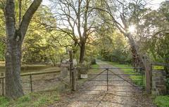 51 Arbury Park Rd, Aldgate (RS 1990) Tags: house classic gate realestate colonial adelaide 51 southaustralia aldgate 1900s klemich arburyparkrd
