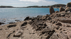 IMG_6725 (Chris Wood 1954) Tags: tresco islesofscilly