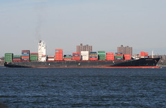 CUCKOO HUNTER in New York, USA. April, 2016 (Tom Turner - SeaTeamImages / AirTeamImages) Tags: nyc usa newyork water port bay harbor marine unitedstates harbour transport vessel spot cargo container pony maritime transportation statenisland bigapple channel spotting waterway tomturner cuckoohunter