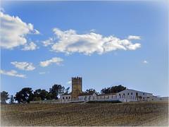 CASTILLO DE MACHARNUDO (BLAMANTI) Tags: castillo viñas viñedos