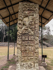 "Copan Ruinas: la Plaza Principal et ses stèles <a style=""margin-left:10px; font-size:0.8em;"" href=""http://www.flickr.com/photos/127723101@N04/26457336172/"" target=""_blank"">@flickr</a>"