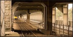 Under the 55 (peterdouglas1) Tags: anglesey infastructure menaistraits class37 britanniabridge 37069 directrailservices