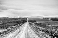 Cohocton (alamme) Tags: newyork rural landscape farm upstate fingerlakes cohocton