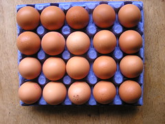Dunnes Stores Better Value 20 Large hen Eggs 21052016 €3.50 01-05-2016 - Tray 1 Open (Lord Inquisitor) Tags: brown eggs hen dunnes eggcarton eggbox heneggs 21052016