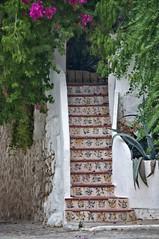 DSC_5269 (artsynancy) Tags: flowers stairs spain artistic bougainvillea tiles mallorca oldcity historiccity walledcity palmademallorca