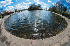 Platt Fields Lake (kh1234567890) Tags: pentax fisheye 8mm pentaxforums samyang8mmf35 k5ii