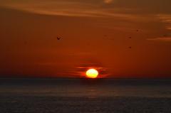 DSC_5322 (Rizzer1) Tags: ocean sunrise grove oceangrove
