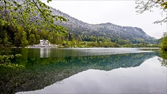 Thumsee (Heinrich Plum) Tags: lake reflection water bayern bavaria see fuji oberbayern upperbavaria plum spiegelung badreichenhall berchtesgadenerland xe2 heinrichplum xf1024mm