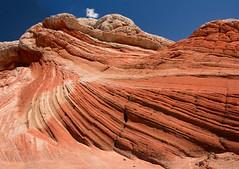 Colors and Curves (Journey CPL) Tags: park blue arizona sky sun nature colors rock trekking trek photography utah nikon bureau curves cliffs formation management national land vermilion d7100 18140mm