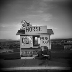 Horse (LowerDarnley) Tags: arizona horse southwest sunrise utah holga chair tour monumentvalley tours pferd navajonation southwesttwo