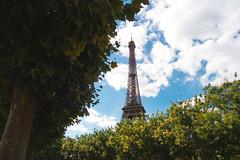Towering Over Paris - The Eiffel Tower (benpicko) Tags: summer paris france colour tower beautiful de colorful tour eiffel colourful le