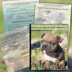 Free Puppy Handbook (Rock City Kennels) Tags: city dog baby pets cute love chattanooga rock puppy book puppies tn tennessee adorable mini bulldog pitbull exotic american micro frenchie how booklet bully information handbook pitbulls frenchy kennels rockline
