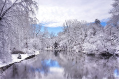 Winter Wonderland (*~ Nature's Gifts Captured  ~*) Tags: trees winter sky snow reflection water clouds river newjersey scenery artistic creative winterwonderland winterscene 2016 nikonphotography njnature naturesgiftscaptured nikond4s tamihrycak