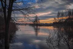 Hochwasser (cuba-photo) Tags: sun tree night clouds river see abend duck wasser dusk wolken fluss ente sonne baum niedersachsen nikond90
