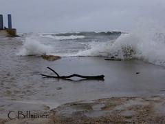 P1020164 (Cintia Billmaier.) Tags: strand mar meer marejada playa welle ola cantabria suances arbolada lumixtz60