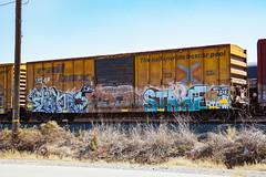 (o texano) Tags: uk by bench graffiti texas houston trains zee db strike token freights rtd flyid benching