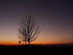 Quelqu'un sait-il o l'on va ? (blogspfastatt (+3.000.000 views)) Tags: winter sunset sky mountain tree montagne landscape nice hiver himmel ciel paysage soir pfastatt blogspfastatt