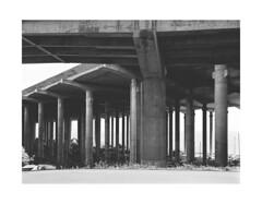 (ovit) Tags: film analog madeira mamiya645 2013 img508