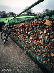 Eran tal para cual, solo necesitaban tiempo para darse cuenta. (Mario_TT) Tags: bridge love bicycle puente photo amor couples bicicleta alemania hamburgo fotografa parejas inspiracin candados iphone6
