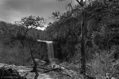 _DSC5811.jpg (cmayart88) Tags: blackandwhite cliff white mountain lake black tree pine river georgia landscape waterfall rocks stream lookout granite gorge lula lookoutmountain lulalake