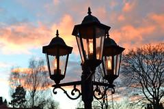 Lit Up by Sunset (ennyhellsen) Tags: sunset streetlight