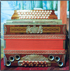 Öllerer_Hasselblad 500 C/M (ksadjina) Tags: music 6x6 film analog scan instruments c41 hasselblad500cm kodakportra400 silverfast nikonsupercoolscan9000ed carlzeissdistagon40mmf14 öllerer