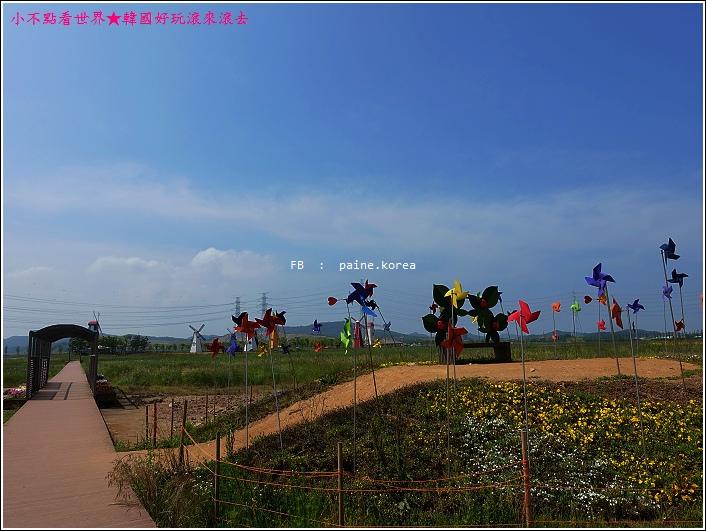 大阜島海邊香氣公園 (22).JPG