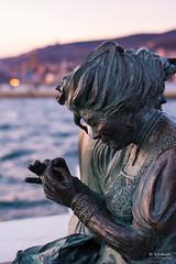 Le mule de Trieste (s.austinukit) Tags: sea statue bronze trieste