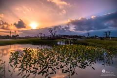 花蓮台開心馬場 (Wi 視覺) Tags: light cloud landscapes taiwan 台灣 花蓮 台開心馬場
