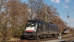 0571_2016_02_28_Wanne_Eickel_MRCE_dispolok_DISPO_ES_64_U2_-_065_6182_565_ES_64_U2_-_060_DISPO_6182_560 (ruhrpott.sprinter) Tags: railroad train germany logo u2 deutschland graffiti diesel outdoor natur eisenbahn rail zug db cargo 64 101 nrw passenger 12 es fret flugzeug ruhr ruhrgebiet f4 freight vt locomotives metropole sncf erb 113 lokomotive 181 txl 182 146 sprinter thalys ruhrpott 422 gter 1428 0427 425 rbh ctd 0275 dispo 5403 6143 mrce 0043 reisezug txla dispolok txlogistik abellio velaro ellok hkx