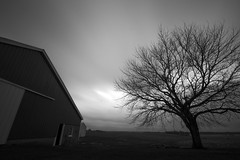 Farm shot with WonderPana XL ND1000 186mm filter (FotodioxPro) Tags: winter blackandwhite tree nature silhouette clouds barn dark landscape illinois moody farm stormy motionblur haunting filed circularpolarizer ndfilter newproduct landscapephotography nd1000 fotodiox filtersystem ultrawideanglelens fotodioxpro wonderpana wonderpanafreearc canon1124mm canonef1124mmf4l wonderpanaxl filterforcanon1124