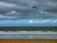 Praia Amrica 10 un da de lluvia (Pepe Fernndez) Tags: autumn mar paisaje nubes otoo olas gaviotas panxn nigrn playaamrica praiaamrica