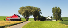 Everything In Its Right Place (John Westrock) Tags: panorama house barn rural farm bluesky panoramic farmland driveway pacificnorthwest washingtonstate palouse canonef100400mmf4556lisusm canoneos5dmarkiii