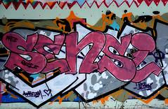 graffiti amsterdam (wojofoto) Tags: holland amsterdam graffiti nederland netherland hof sensi flevopark amsterdamsebrug wolfgangjosten wojofoto