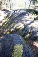 IMG_7809 (ckhaley) Tags: new white mountain mountains rock rocks outdoor hiking trails newhampshire whitemountains hampshire hike mount trail morgan squamlake scrambling squam mountmorgan mountpercival crawfordridgepoletrail mountpercivaltrail morganpercivalconnector