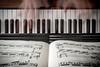 Hand piano (NicchiaPhoto) Tags: music canon hands angle wide piano yamaha chopin keyes etude