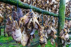 Fish Soup (Mark Heeney UK) Tags: iceland sonya77 markheeneyuk sal1650