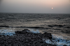Arabian Sea (Jackson Pollard) Tags: travel sunset sea portrait lighthouse india abandoned dogs animal sunrise landscape vines ruins asia fort goa beaches arabian shelter derelict aguada