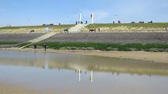 Zoutelande - Strandleben (stephan200659) Tags: holland beach strand sand noordzee zeeland netherland schelde nordsee niederlande veere walcheren zoutelande zeeuws westerschelde nederlande