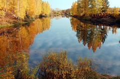 DSC_6070 (Rustam Bikbov) Tags: autumn september 2012    sverdlovskoblast