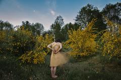 Go Gently With Me (Amanda K. White) Tags: morning flowers portrait selfportrait color yellow sunrise emotion feeling pnw amandawhite mightyamanda amandakwhite