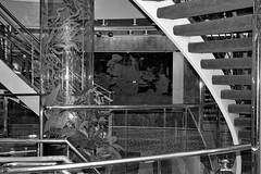 040310-327Fx (kzzzkc) Tags: bw nikon staircase d200 hollandamerica msprinsendam glassmaritimemural